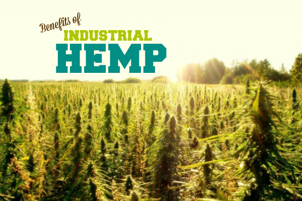 industrial hemp benefits HempCraft